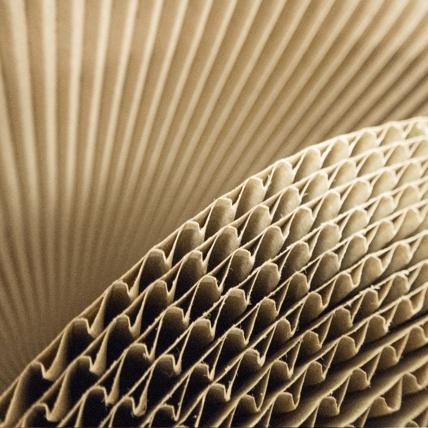 Cross section of corrugated cardboard
